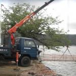 131022観測桟橋修理3