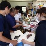 20150927 秋の実習5 魚類標本作製