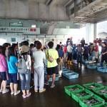20150828 海洋系実習II 魚市場見学1