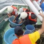 20170830海洋系実習II3