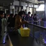 20150223ポケゼミ魚っ知館見学
