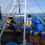 20151209緑洋丸最終航海1