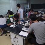 20170820関西学院大学実習5