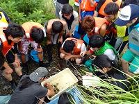京都大学 水産 実習 募集の画像